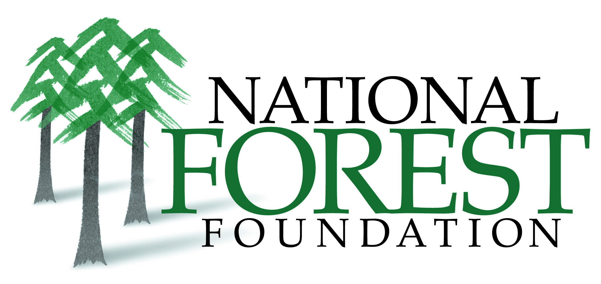 NFF Logo JPG Color.jpg